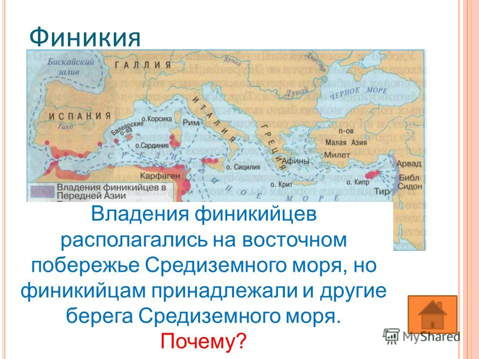 Финикия Владения финикийцев располагались на восточном побережье Средиземного моря, но финикийцам принадлежали и другие берега Средиземного моря. Почему?