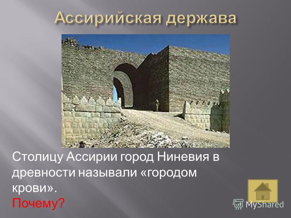 Столицу Ассирии город Ниневия в древности называли «городом крови». Почему?