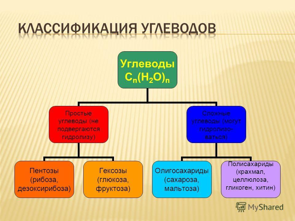 Углеводы Сn(H 2 O)n Простые углеводы (не подвергаются гидролизу) Пентозы (рибоза, дезоксирибоза) Гексозы (глюкоза, фруктоза) Сложные углеводы (могут гидролизо- ваться) Олигосахариды (сахароза, мальтоза) Полисахариды (крахмал, целлюлоза, гликоген, хит