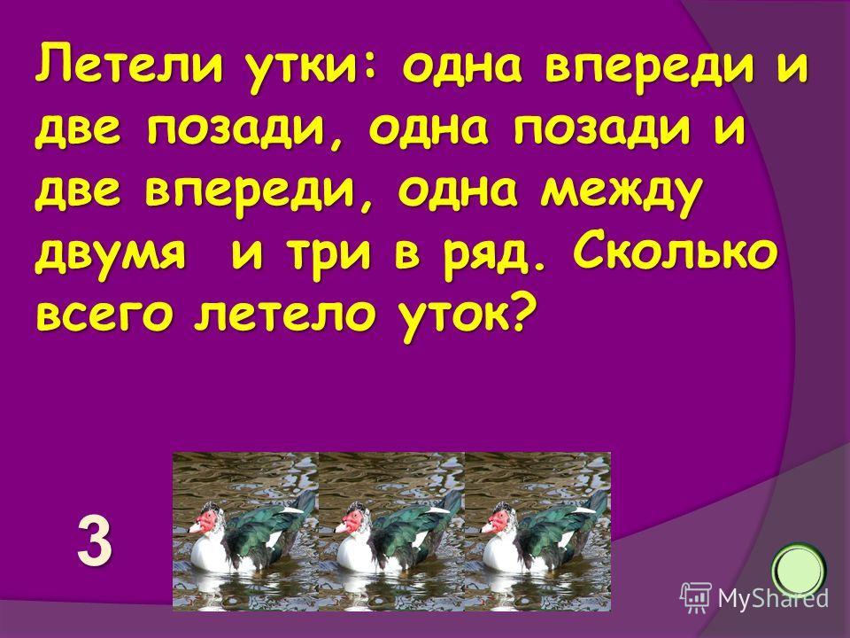 Летели утки: одна впереди и две позади, одна позади и две впереди, одна между двумя и три в ряд. Сколько всего летело уток? 3