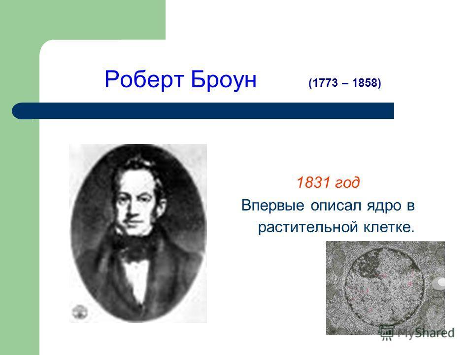 Роберт Броун 1831 год Впервые описал ядро в растительной клетке. (1773 – 1858)