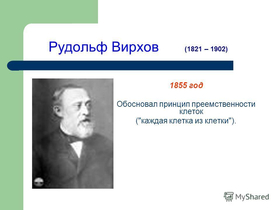 Рудольф Вирхов 1855 год Обосновал принцип преемственности клеток (каждая клетка из клетки). (1821 – 1902)
