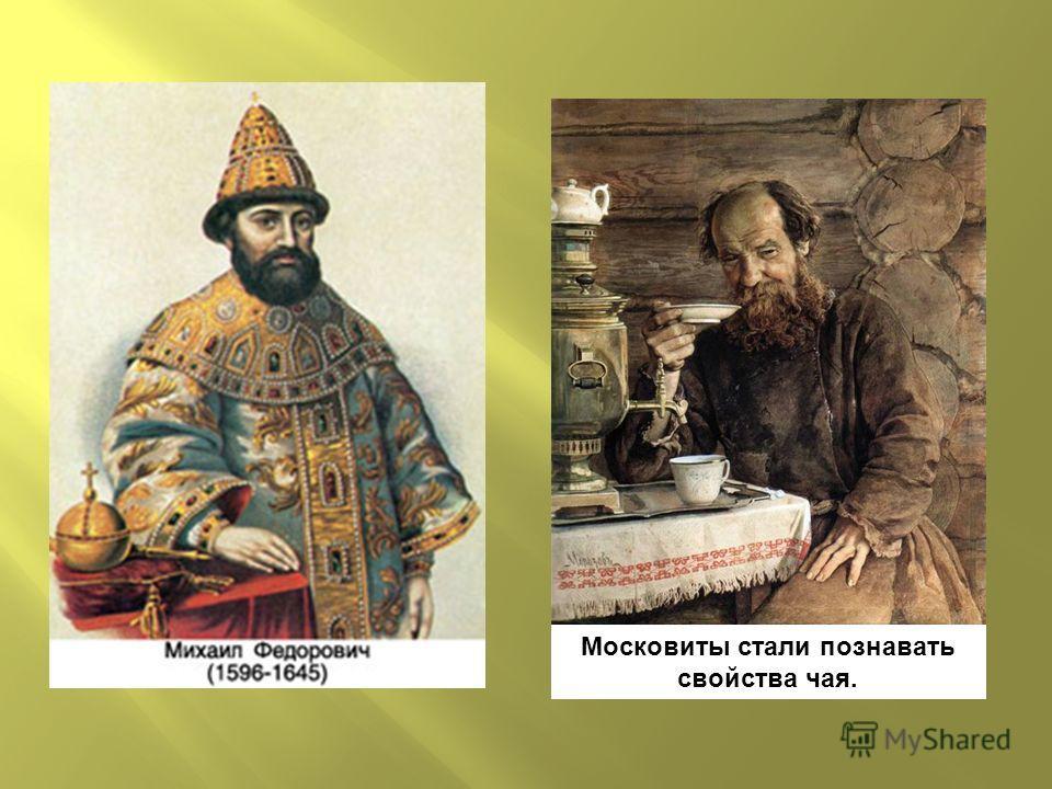 Московиты стали познавать свойства чая.