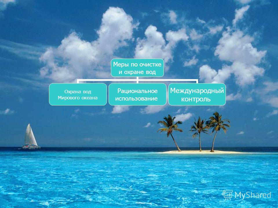 Меры по очистке и охране вод Охрана вод Мирового океана Рациональное использование Международный контроль