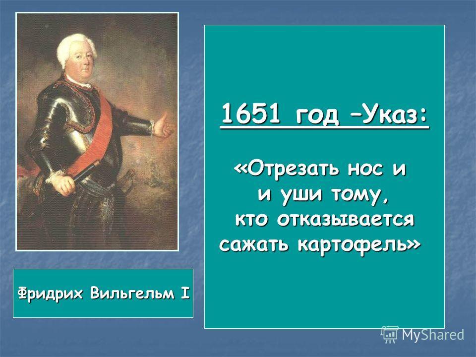 1651 год –Указ: «Отрезать нос и и уши тому, кто отказывается кто отказывается сажать картофель» Фридрих Вильгельм I