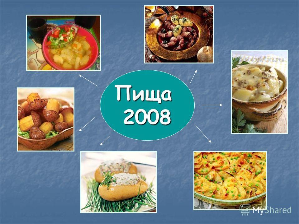Пища2008
