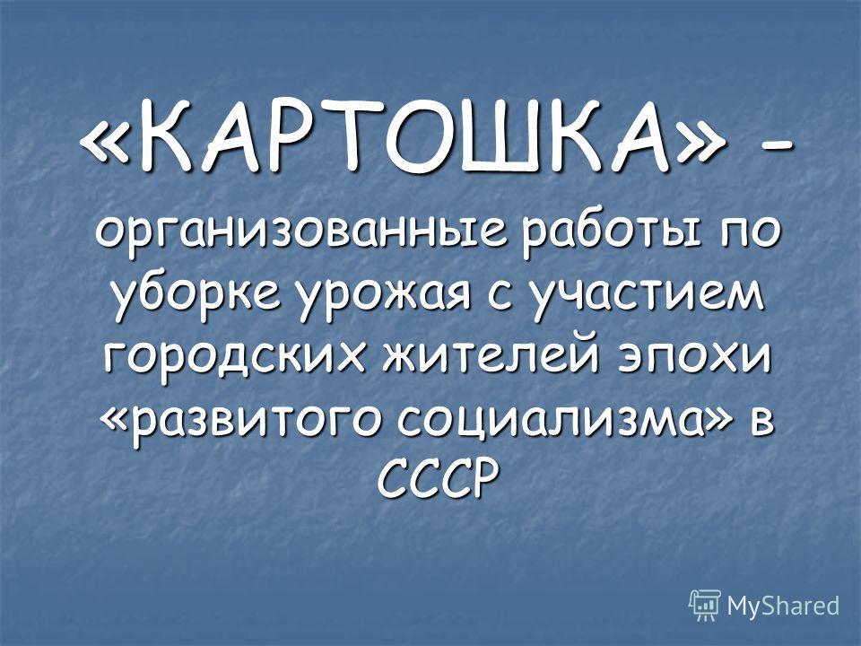 «КАРТОШКА» - организованные работы по уборке урожая с участием городских жителей эпохи «развитого социализма» в СССР