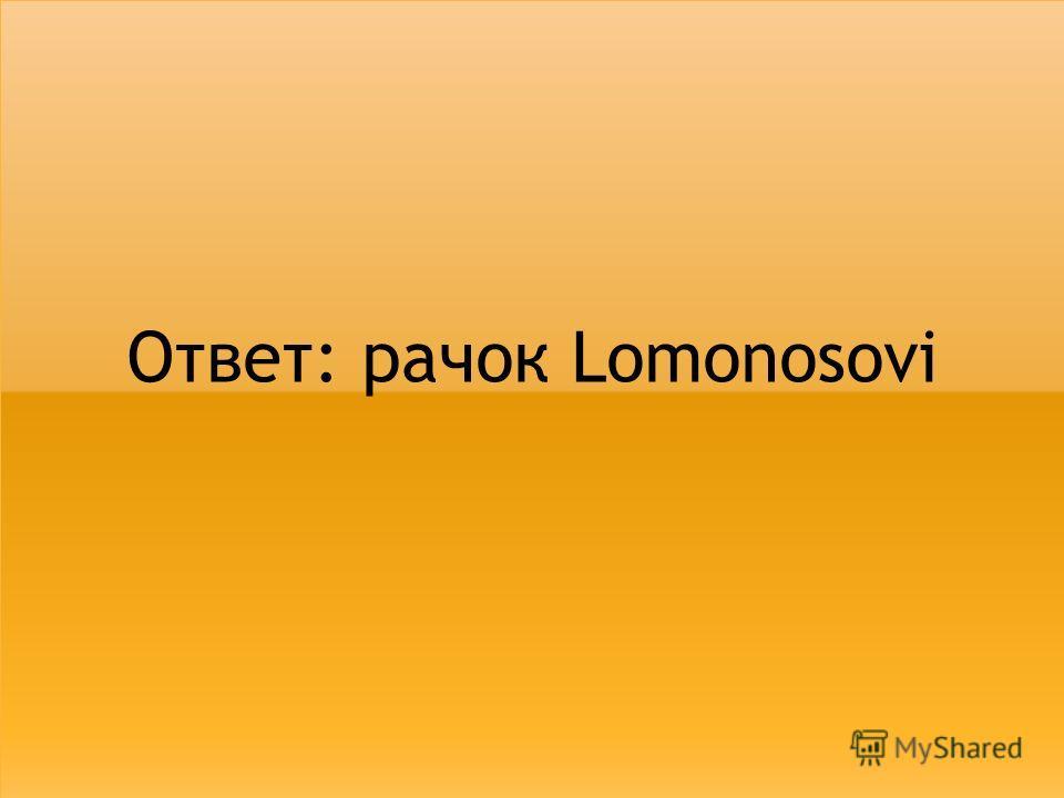 Ответ: рачок Lomonosovi