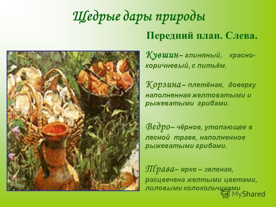 Щедрые дары природы Передний план. Слева. Кувшин – глиняный, красно- коричневый, с питьём. Корзина – плетёная, доверху наполненная желтоватыми и рыжеватыми грибами. Ведро – чёрное, утопающее в лесной траве, наполненное рыжеватыми грибами. Трава – ярк