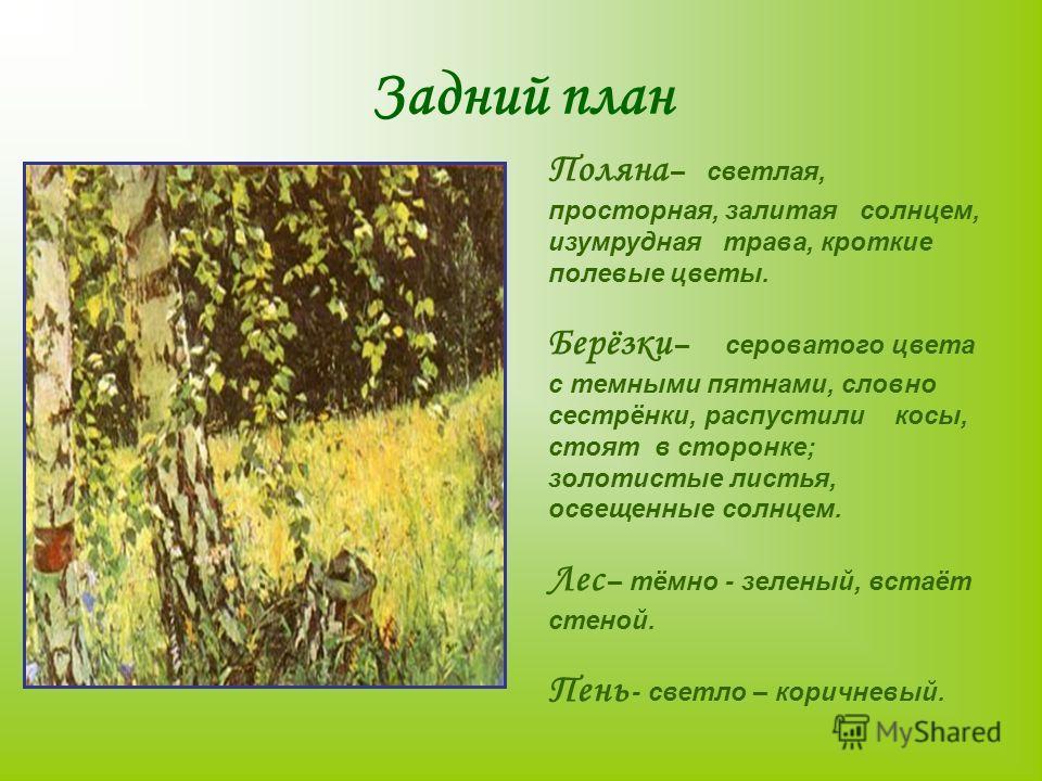 Задний план Поляна – светлая, просторная, залитая солнцем, изумрудная трава, кроткие полевые цветы. Берёзки – сероватого цвета с темными пятнами, словно сестрёнки, распустили косы, стоят в сторонке; золотистые листья, освещенные солнцем. Лес – тёмно