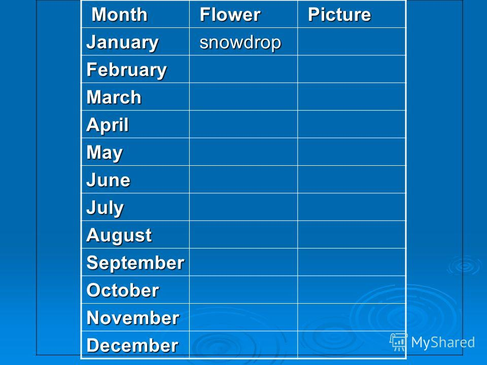 Month Month Flower Flower Picture PictureJanuary snowdrop snowdrop February March April May June July August September October November December