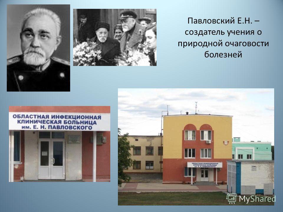 Павловский Е.Н. – создатель учения о природной очаговости болезней