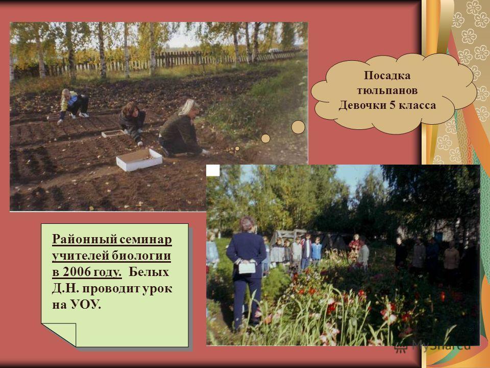 Уборка ботвы Гавриш Ваня Установка клумб 11 класс
