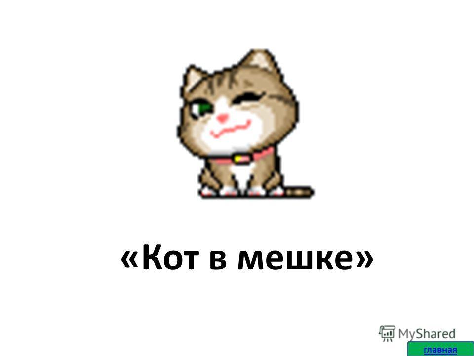 «Кот в мешке»
