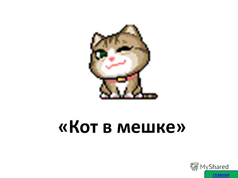 «Кот в мешке» главная