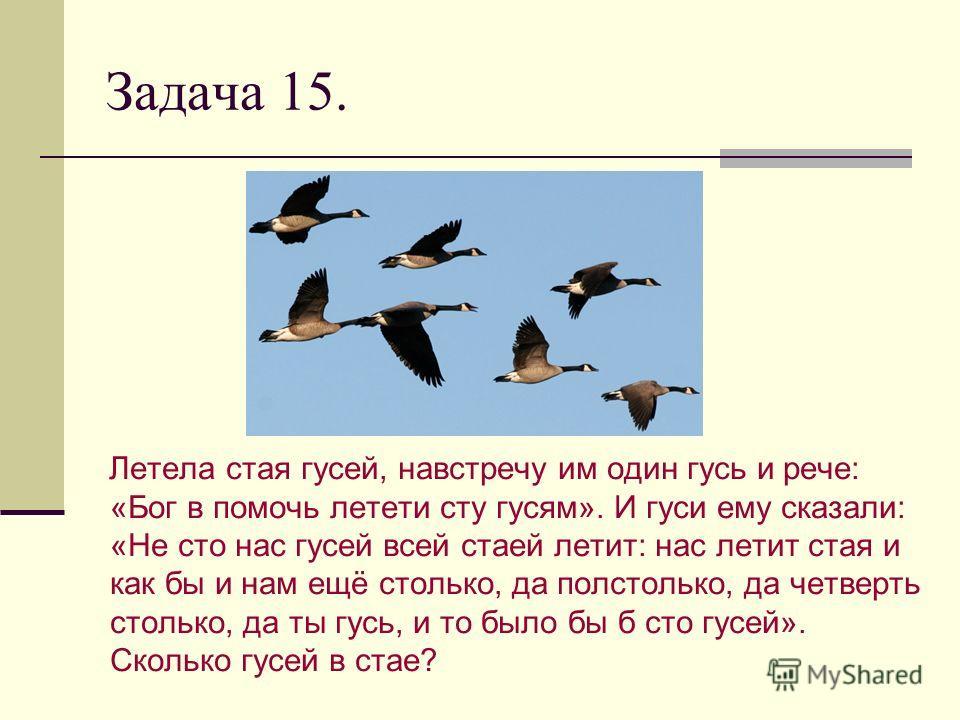 Задача 15. Летела стая гусей, навстречу им один гусь и рече: «Бог в помочь летети сту гусям». И гуси ему сказали: «Не сто нас гусей всей стаей летит: нас летит стая и как бы и нам ещё столько, да полстолько, да четверть столько, да ты гусь, и то было
