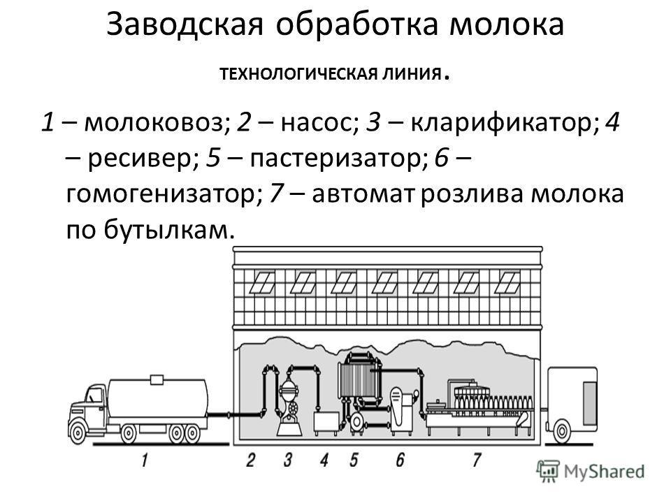 Заводская обработка молока ТЕХНОЛОГИЧЕСКАЯ ЛИНИЯ. 1 – молоковоз; 2 – насос; 3 – кларификатор; 4 – ресивер; 5 – пастеризатор; 6 – гомогенизатор; 7 – автомат розлива молока по бутылкам.