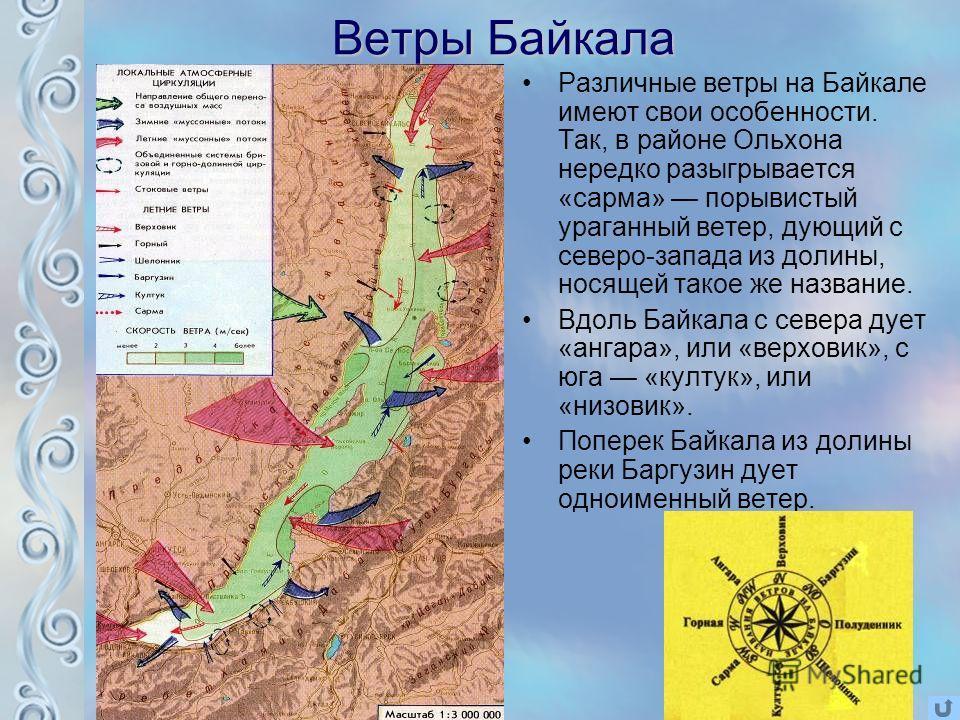 Ветры Байкала Различные ветры на Байкале имеют свои особенности. Так, в районе Ольхона нередко разыгрывается «сарма» порывистый ураганный ветер, дующий с северо-запада из долины, носящей такое же название. Вдоль Байкала с севера дует «ангара», или «в