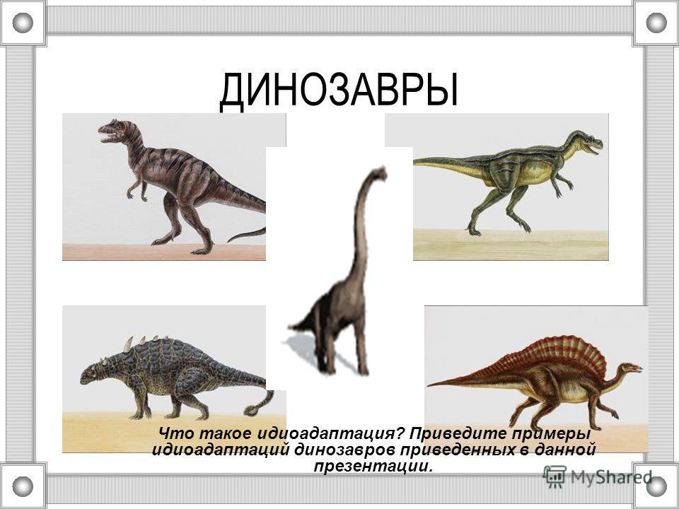 Что такое идиоадаптация? Приведите примеры идиоадаптаций динозавров приведенных в данной презентации.