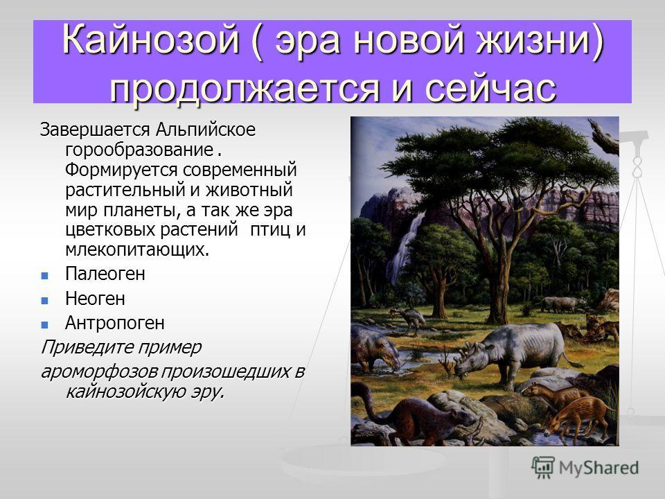 Кайнозой ( эра новой жизни) продолжается и сейчас Завершается Альпийское горообразование. Формируется современный растительный и животный мир планеты, а так же эра цветковых растений птиц и млекопитающих. Палеоген Палеоген Неоген Неоген Антропоген Ан