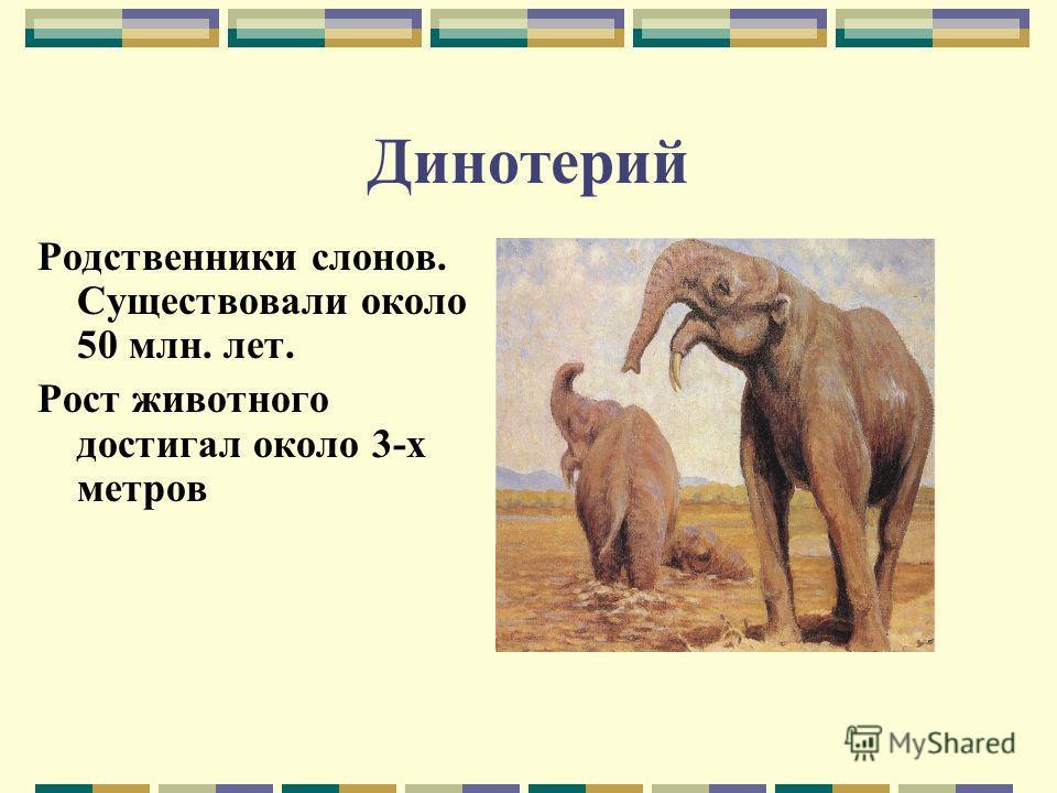 Динотерий Родственники слонов. Существовали около 50 млн. лет. Рост животного достигал около 3-х метров
