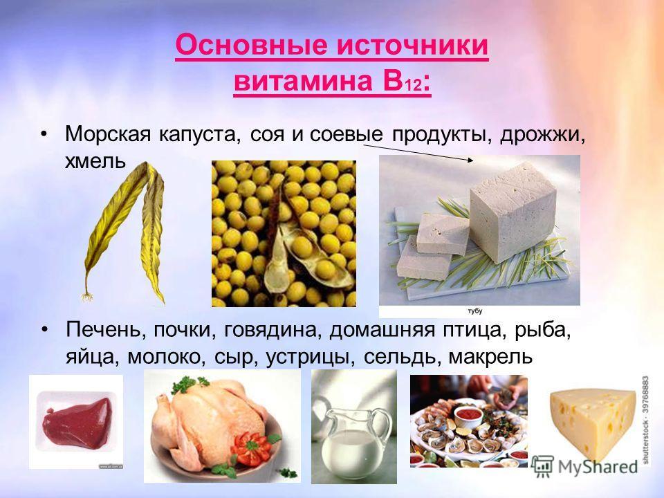 Основные источники витамина В 12 : Морская капуста, соя и соевые продукты, дрожжи, хмель Печень, почки, говядина, домашняя птица, рыба, яйца, молоко, сыр, устрицы, сельдь, макрель