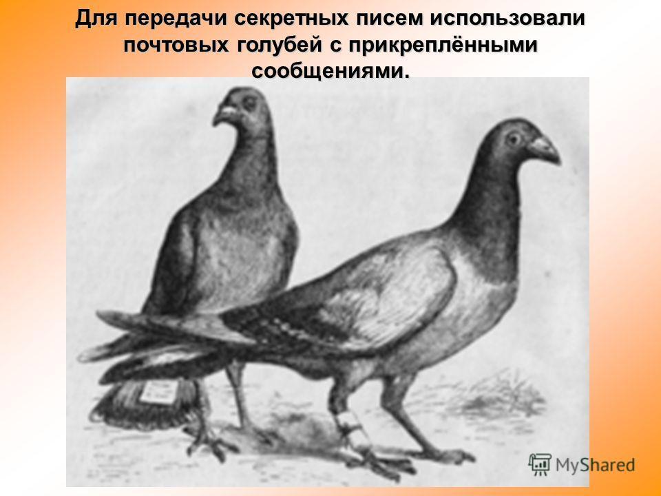 Для передачи секретных писем использовали почтовых голубей с прикреплёнными сообщениями.