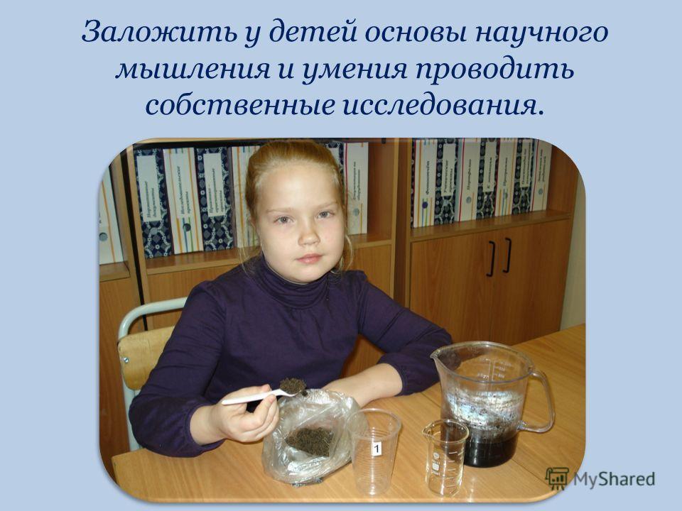 Заложить у детей основы научного мышления и умения проводить собственные исследования.