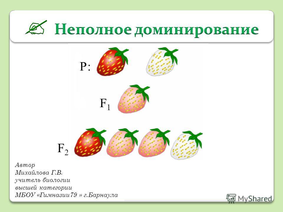 Автор Михайлова Г.В. учитель биологии высшей категории МБОУ «Гимназии79 » г.Барнаула Р: F1F1 F2F2