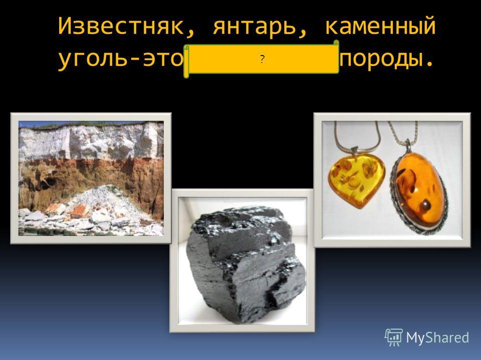 Известняк, янтарь, каменный уголь-это осадочные породы. ?
