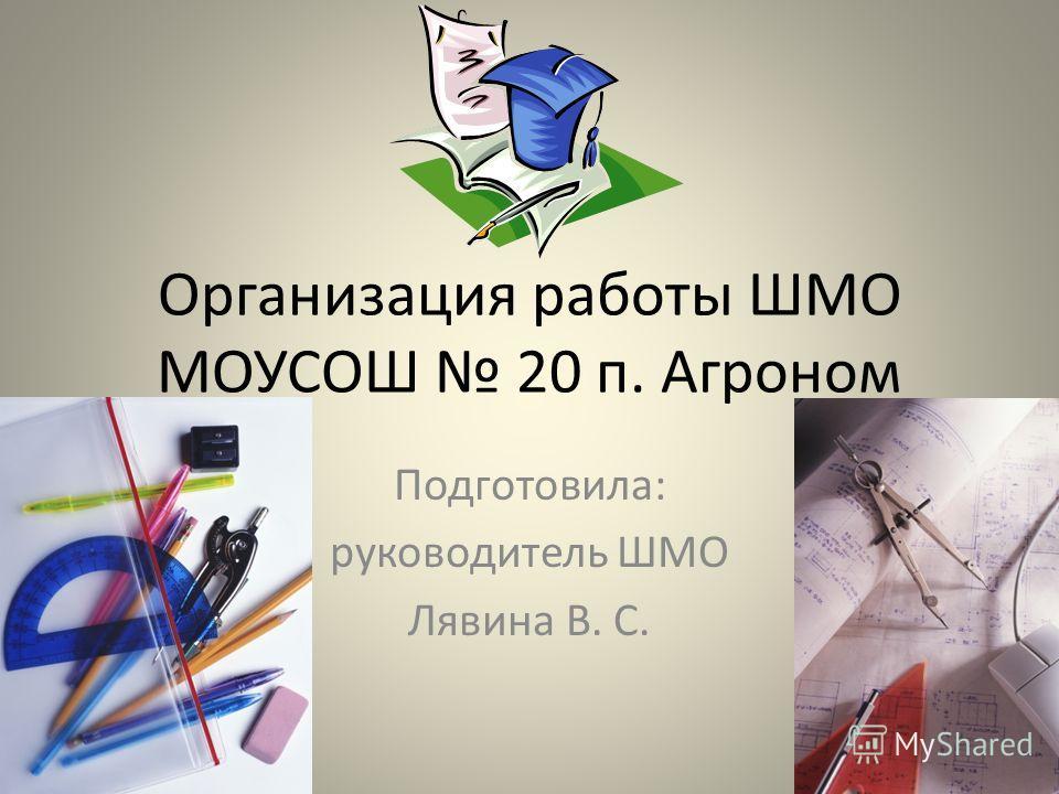 Организация работы ШМО МОУСОШ 20 п. Агроном Подготовила: руководитель ШМО Лявина В. С.
