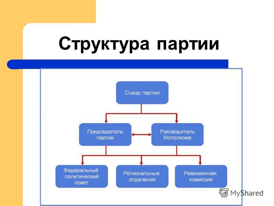 Структура партии