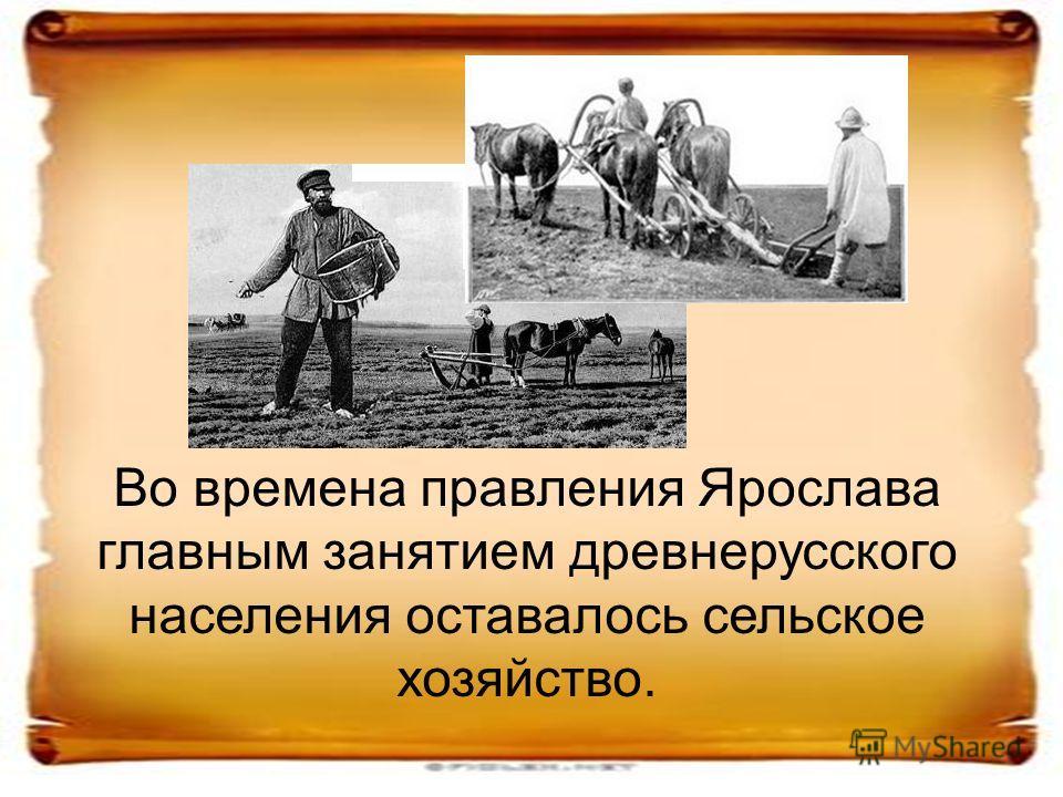 Во времена правления Ярослава главным занятием древнерусского населения оставалось сельское хозяйство.