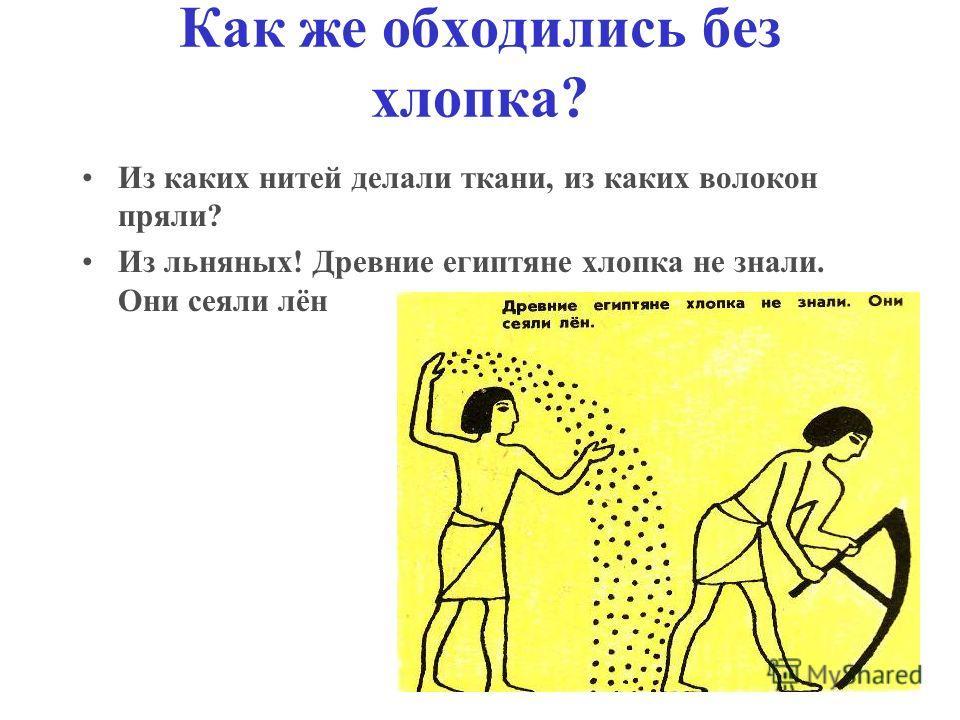 Как же обходились без хлопка? Из каких нитей делали ткани, из каких волокон пряли? Из льняных! Древние египтяне хлопка не знали. Они сеяли лён