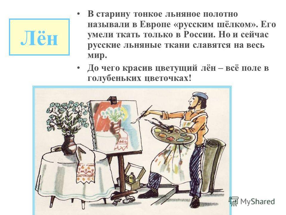 Лён В старину тонкое льняное полотно называли в Европе «русским шёлком». Его умели ткать только в России. Но и сейчас русские льняные ткани славятся на весь мир. До чего красив цветущий лён – всё поле в голубеньких цветочках!