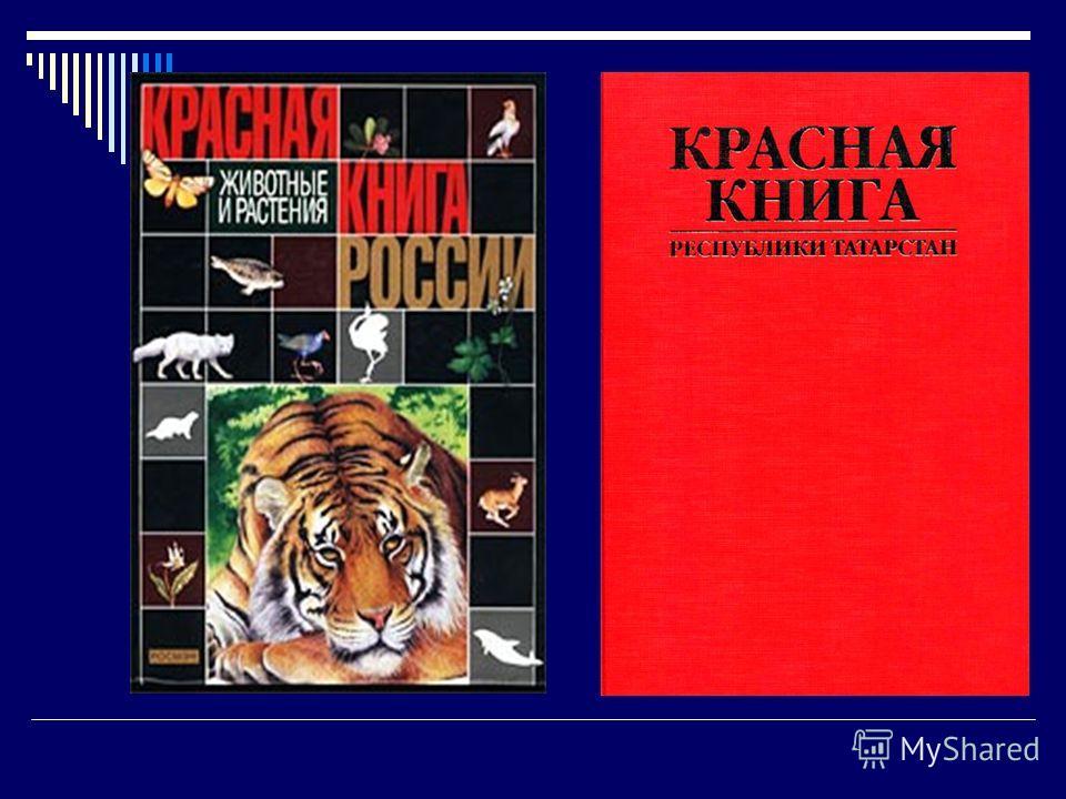 Тезис: Красная книга – Красная! Значит, природа в опасности!