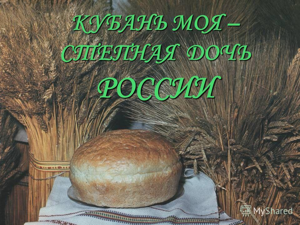 КУБАНЬ МОЯ – СТЕПНАЯ ДОЧЬ РОССИИ