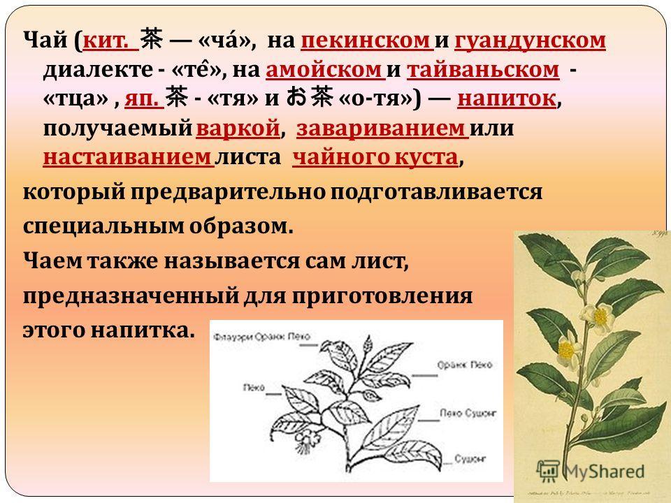 Чай ( кит. « ча », на пекинском и гуандунском диалекте - « те ̂ », на амойском и тайваньском - « тца », яп. - « тя » и « о - тя ») напиток, получаемый варкой, завариванием или настаиванием листа чайного куста, который предварительно подготавливается