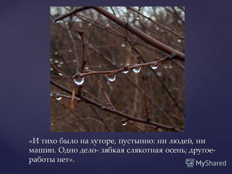 «И тихо было на хуторе, пустынно: ни людей, ни машин. Одно дело- зябкая слякотная осень; другое- работы нет».