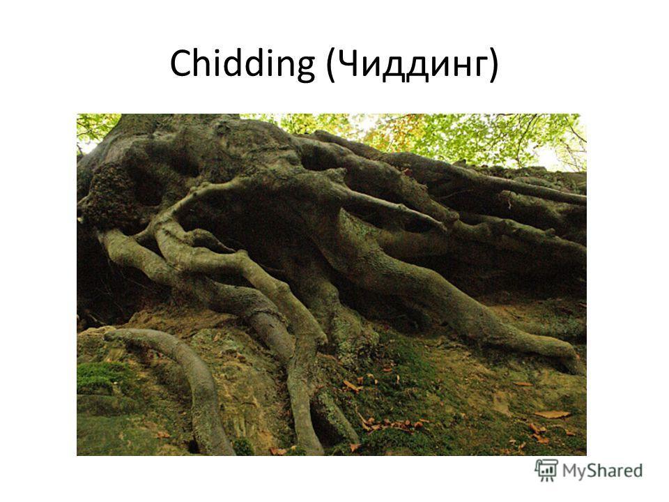 Chidding (Чиддинг)