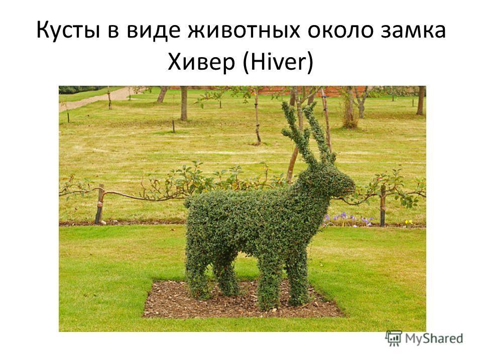 Кусты в виде животных около замка Хивер (Hiver)