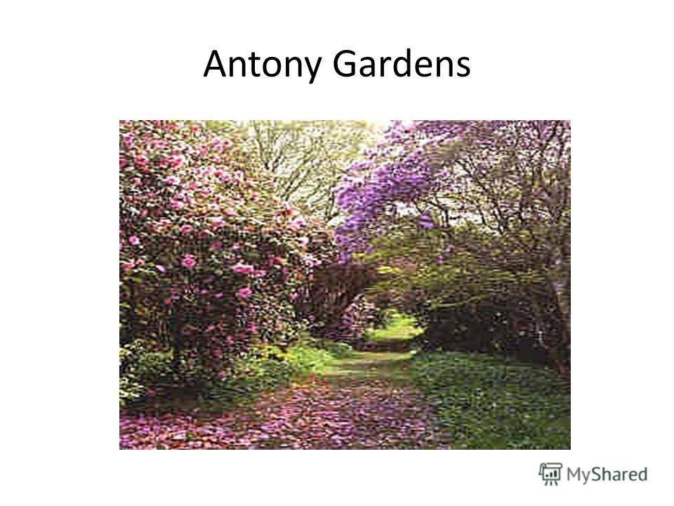 Antony Gardens
