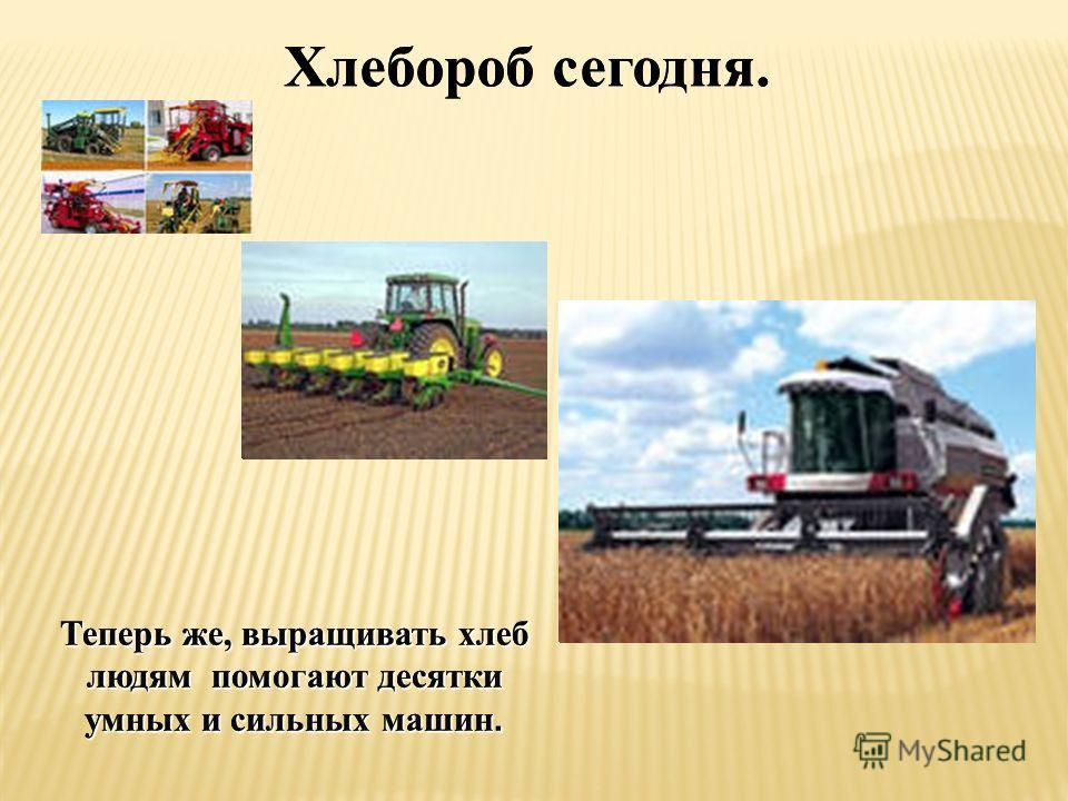 Хлебороб сегодня. Теперь же, выращивать хлеб людям помогают десятки умных и сильных машин. Хлебороб сегодня. Теперь же, выращивать хлеб людям помогают десятки умных и сильных машин.