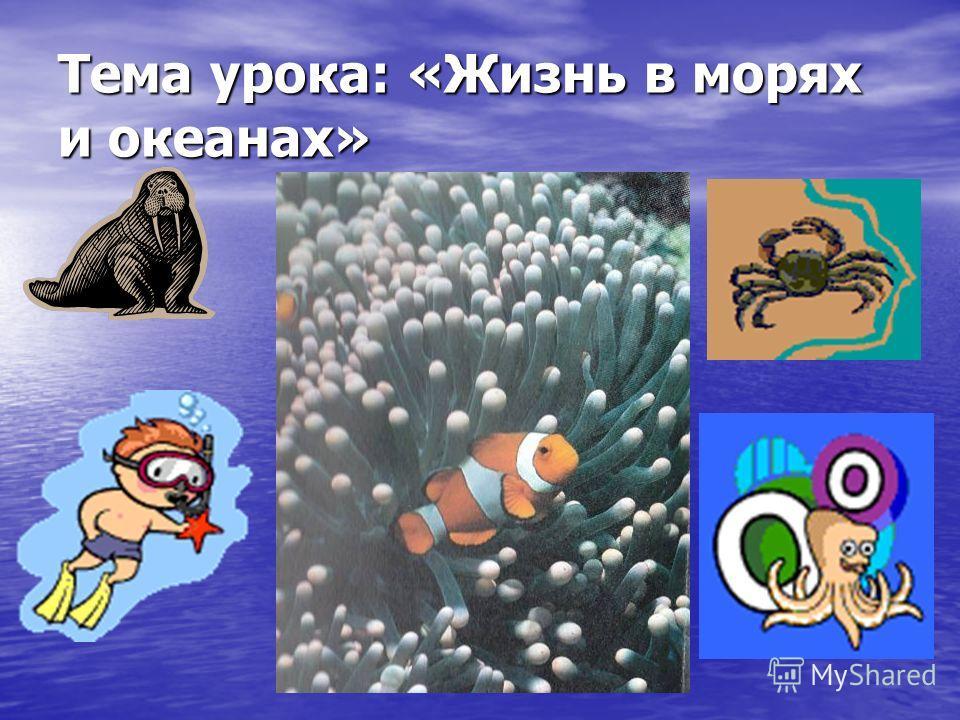 Тема урока: «Жизнь в морях и океанах»