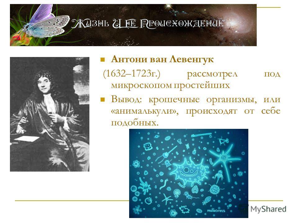 Антони ван Левенгук (1632–1723г.) рассмотрел под микроскопом простейших Вывод: крошечные организмы, или «анималькули», происходят от себе подобных.