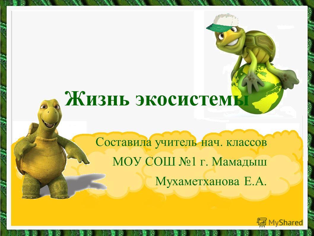 Жизнь экосистемы Составила учитель нач. классов МОУ СОШ 1 г. Мамадыш Мухаметханова Е.А.
