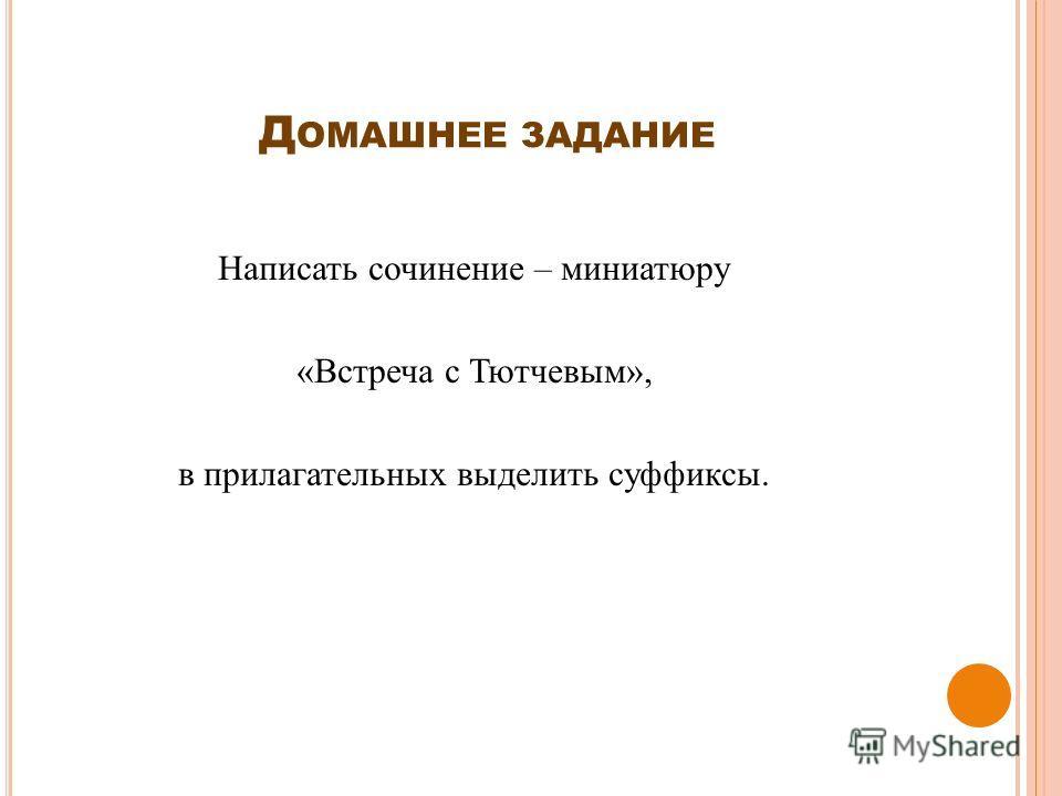 Д ОМАШНЕЕ ЗАДАНИЕ Написать сочинение – миниатюру «Встреча с Тютчевым», в прилагательных выделить суффиксы.