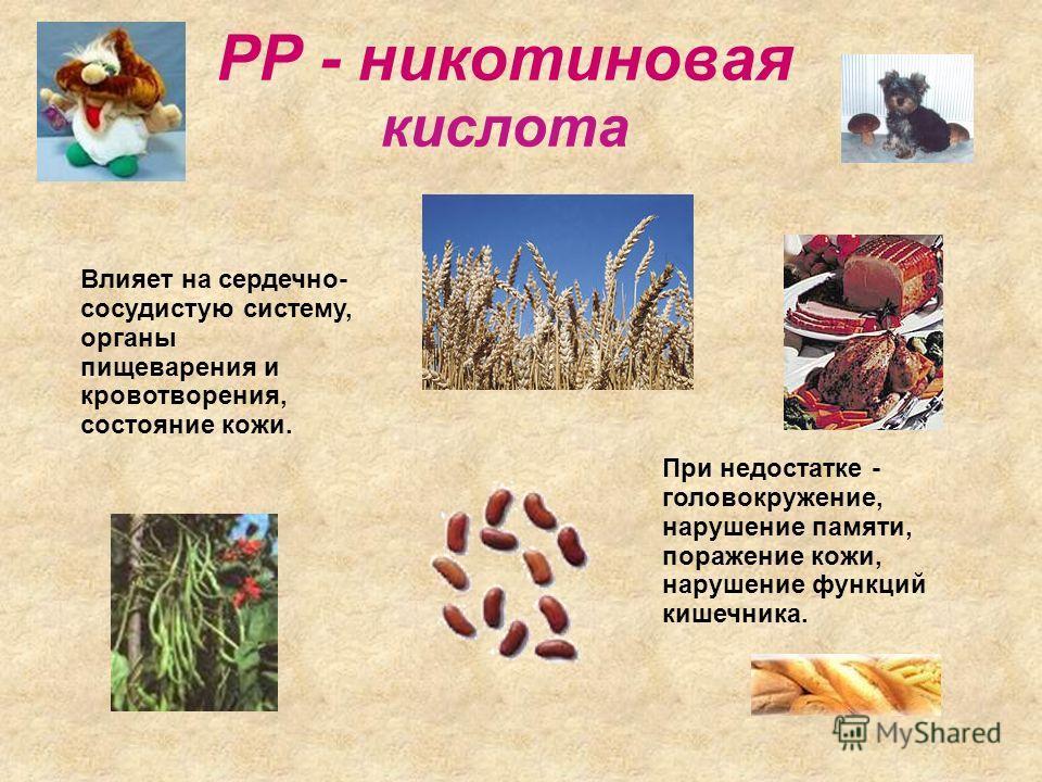 Р - рутин Участвует в окислительно- восстановительных процессах вместе с витамином С. цитрусовые Отвар шиповника Черная смородина Грецкий орех