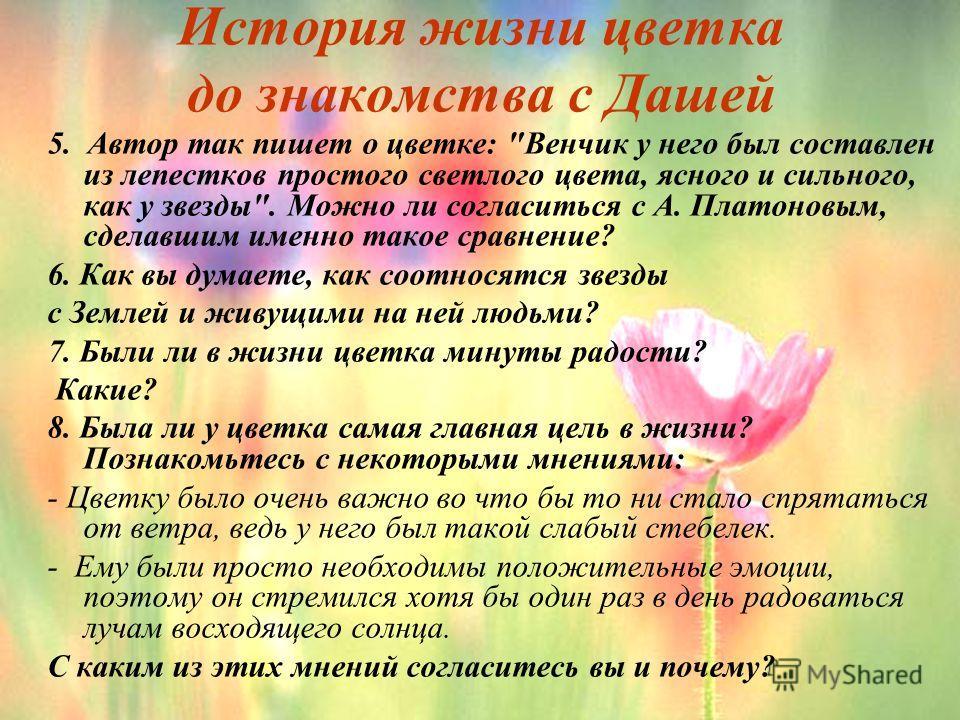 История жизни цветка до знакомства с Дашей 5. Автор так пишет о цветке: