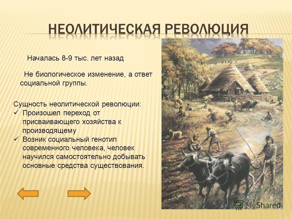 Началась 8-9 тыс. лет назад Не биологическое изменение, а ответ социальной группы. Сущность неолитической революции: Произошел переход от присваивающего хозяйства к производящему Возник социальный генотип современного человека, человек научился самос